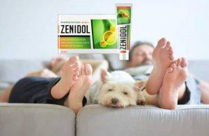 Zenidol Κρέμα για μύκητα και πόδια προβλήματα – Κριτικές, Τιμή στο φαρμακείο, Συστατικά