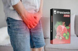 Prostamin Forte Ανασκόπηση – Συμπλήρωμα διατροφής υποστήριξης προστάτη με εκχύλισμα Gotu Kola για έλεγχο της ουροδόχου κύστης, πλήρη προστάτη και σεξουαλική υγεία